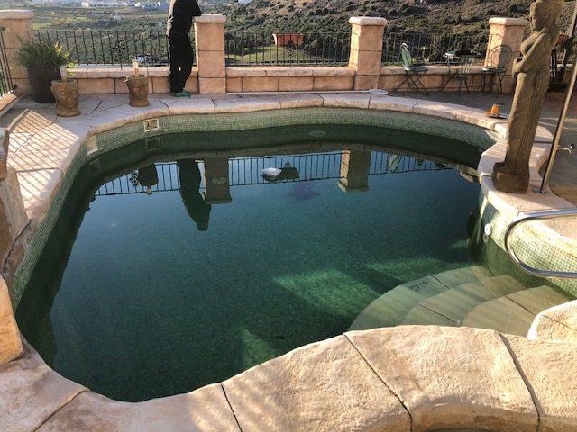 Recupera tu piscina verde